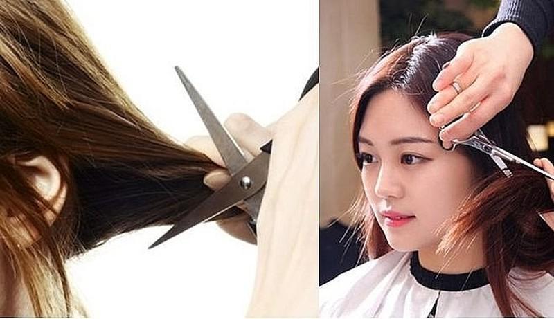 Cắt tỉa tóc để giảm sự khô xơ cho mái tóc của bạn
