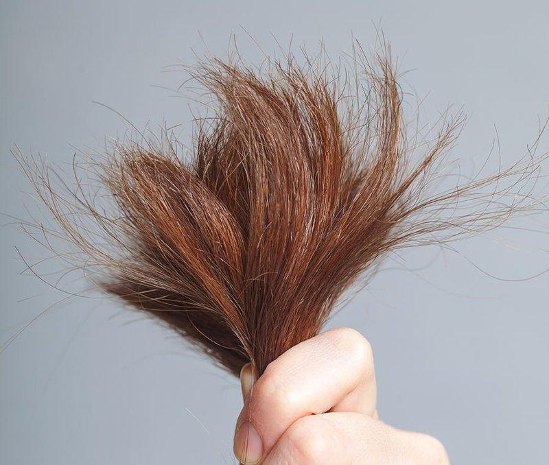 Nguyên nhân gây ra tóc khô xơ