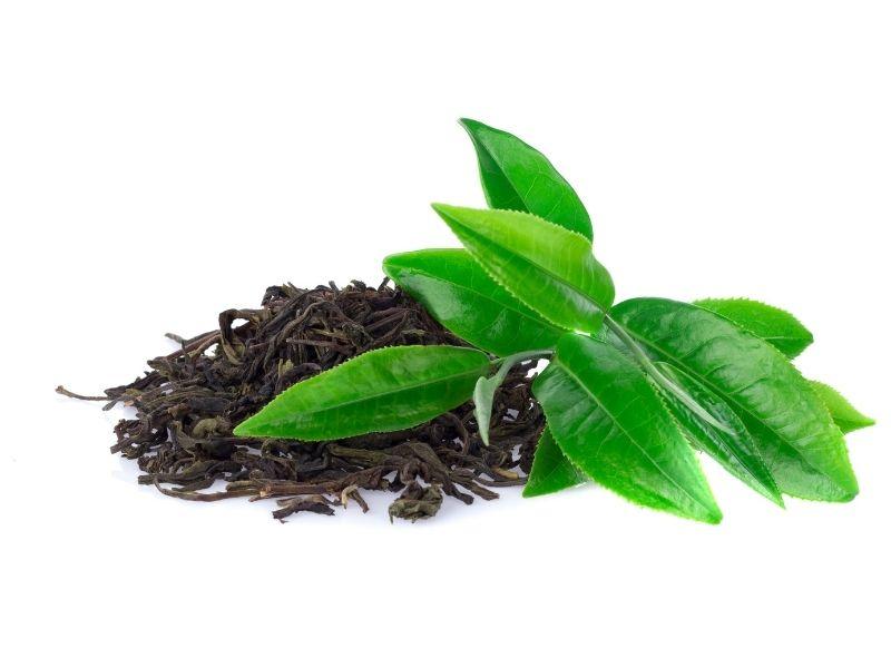 Trà xanh tự nhiên có thể nấu nước dùng như dầu xả