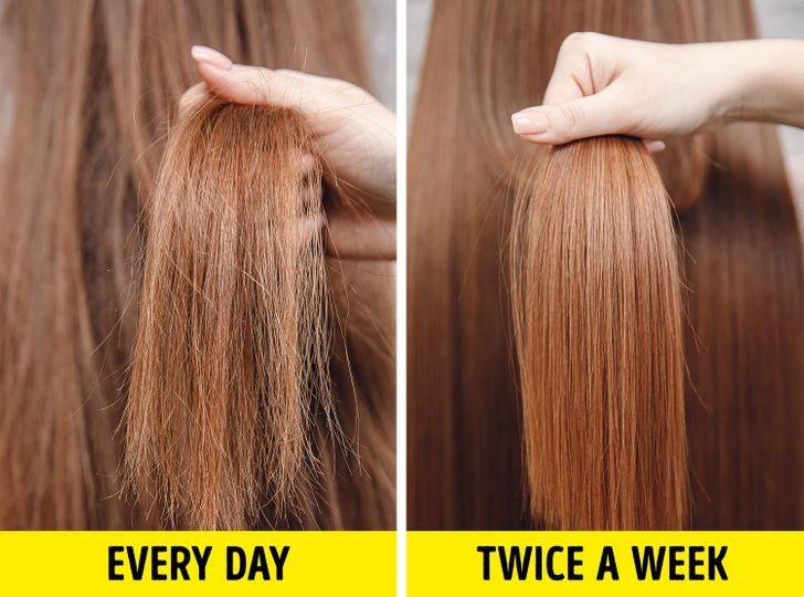 Gội đầu thường xuyên khiến tóc mất đi lượng dầu tự nhiên